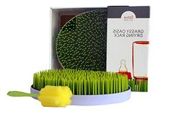 Grassy Oasis Countertop Drying Rack by ChickChefs- Quick, Ea