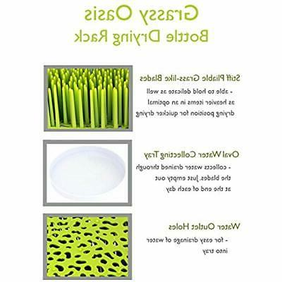 Grassy Countertop Drying Rack ChickChefs- Of