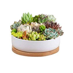 Succulent Planter Ceramic with Bamboo Tray,Y&M 6 inch Modern